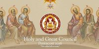Leggi tutto: A un anno dal Santo e Grande Concilio della Chiesa Ortodossa: quale ricezione?