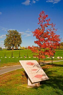 Bose, autunno 2006